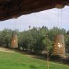 Hanging_Lamps_Pergula3-limor_ben_yosef